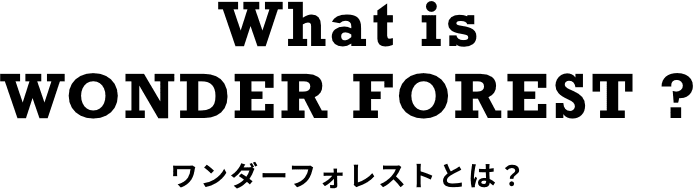 What is WONDER FOREST ? ワンダーフォレストとは?